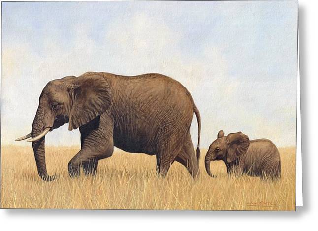 African Elephants Greeting Cards - African Elephants Greeting Card by David Stribbling