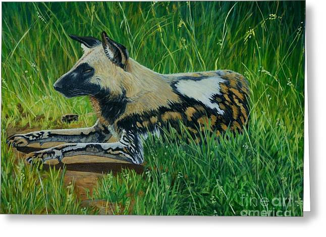 Carolinestreetart Greeting Cards - African Wild Dog Greeting Card by Caroline Street