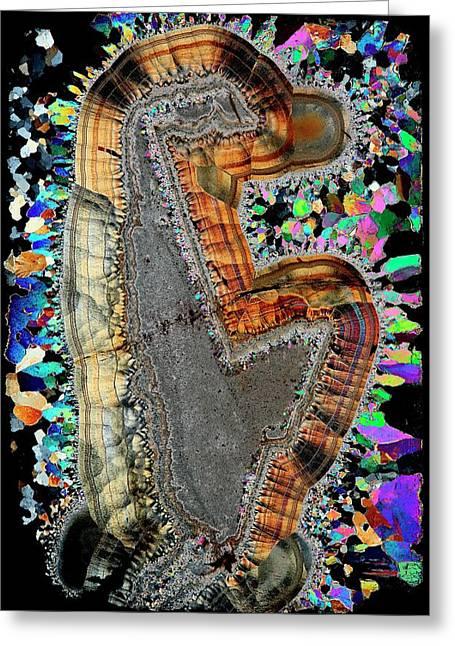 Agate. Polarised Light Micrograph Greeting Card by Antonio Romero
