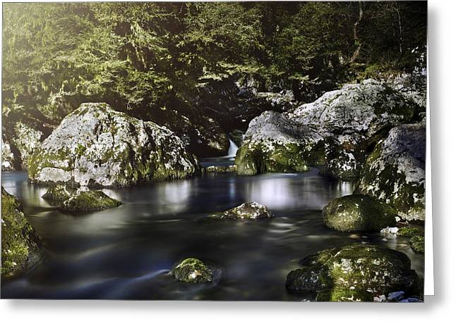 Reflections Of Trees In River Greeting Cards - Aged Boulders Covered With Moss Lying Greeting Card by Evgeny Kuklev
