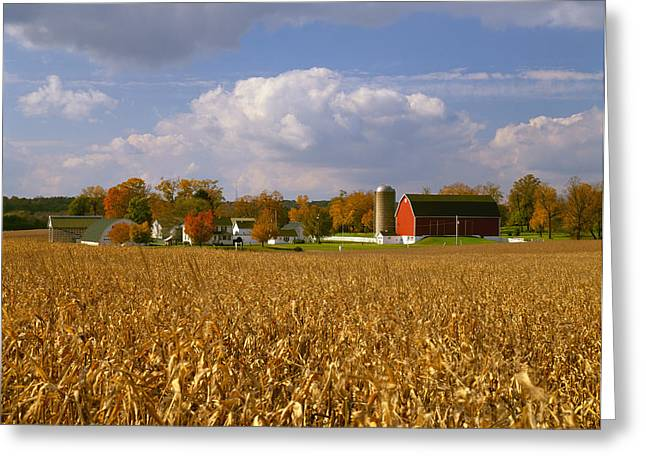 Turning Leaves Greeting Cards - Agriculture - Mature, Harvest Ready Greeting Card by R. Hamilton Smith