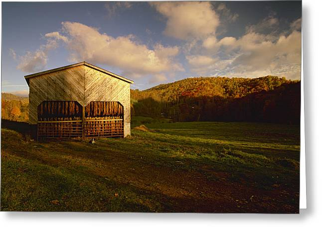 Turning Leaves Greeting Cards - Agriculture - Tobacco Barn In A Rural Greeting Card by R. Hamilton Smith