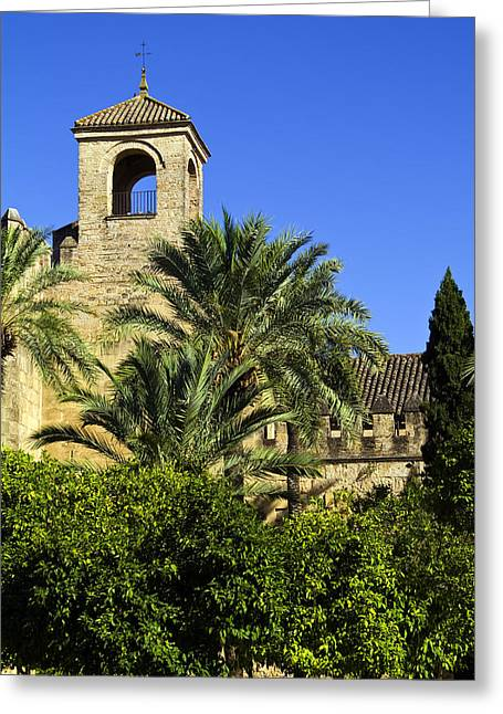 Weather Cock Greeting Cards - Alcazar among Palm trees Greeting Card by John Rocha
