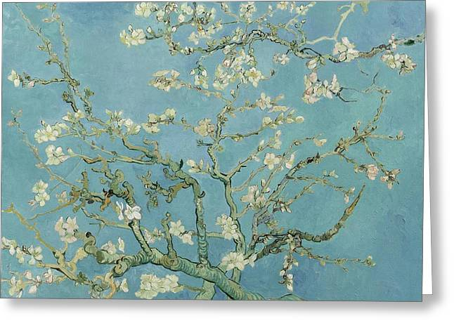 Vintage Art Greeting Cards - Almond Blossom Greeting Card by Vintage Art