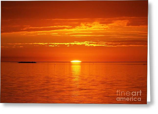 Cedar Key Greeting Cards - Almost Gone Greeting Card by D Hackett