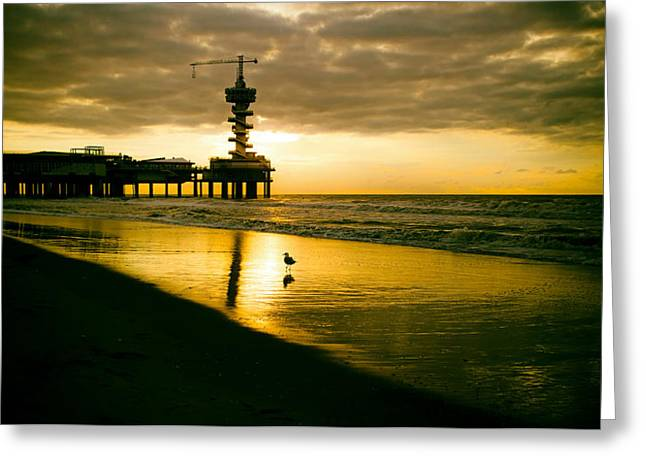 Surf Silhouette Greeting Cards - Alone at Sunset Greeting Card by Mountain Dreams