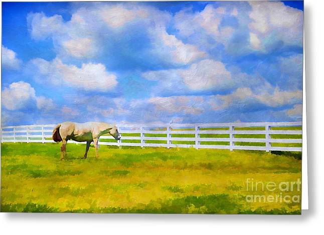 Kentucky Horse Park Photographs Greeting Cards - Alone Greeting Card by Darren Fisher