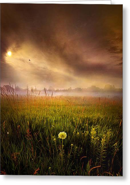 Geographic Greeting Cards - Alone Greeting Card by Phil Koch