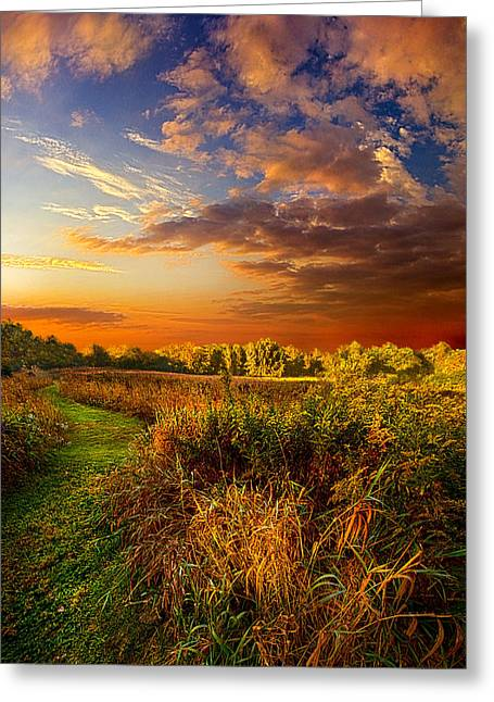 Path Greeting Cards - Along The Way Greeting Card by Phil Koch