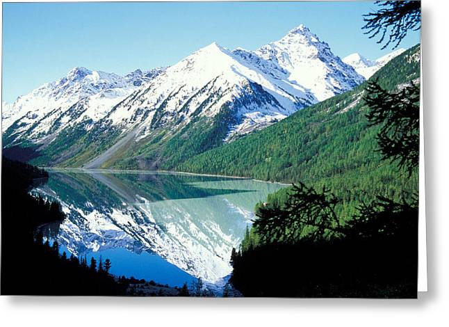 Forestland; Hills Greeting Cards - Altai Mountains Greeting Card by Anonymous