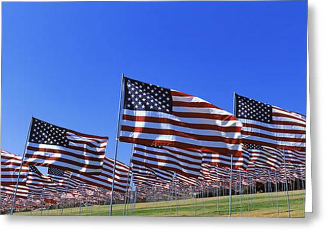 9-11 Greeting Cards - American Flags In Memory Of 911 Greeting Card by Panoramic Images