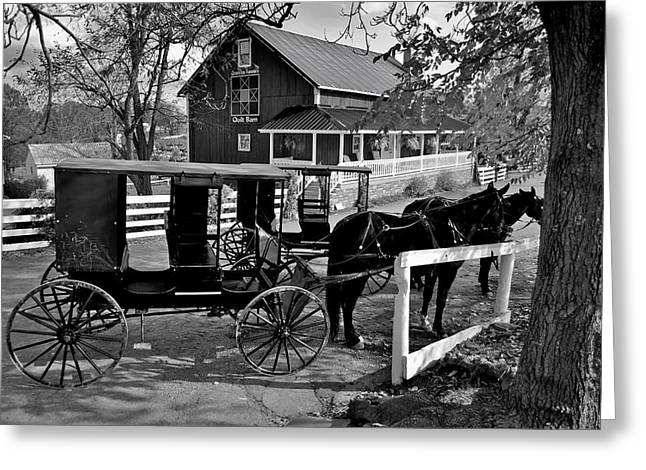 Horse And Buggy Greeting Cards - Amish Country Greeting Card by Frozen in Time Fine Art Photography