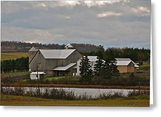 Maine Farms Greeting Cards - Amish Farm Greeting Card by Charles Cormier
