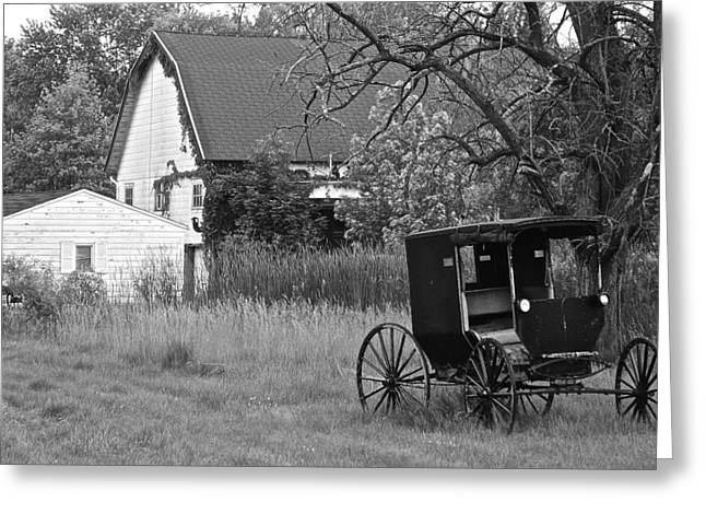 Amish Greeting Cards - Amish Living Greeting Card by Frozen in Time Fine Art Photography