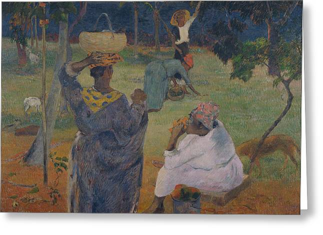 Mango Greeting Cards - Among the mangoes at Martinique Greeting Card by Paul Gauguin