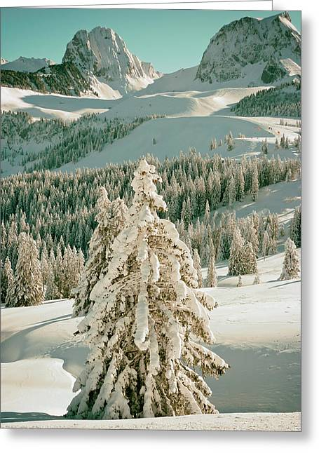 An Alpine Winter Greeting Card by Mountain Dreams