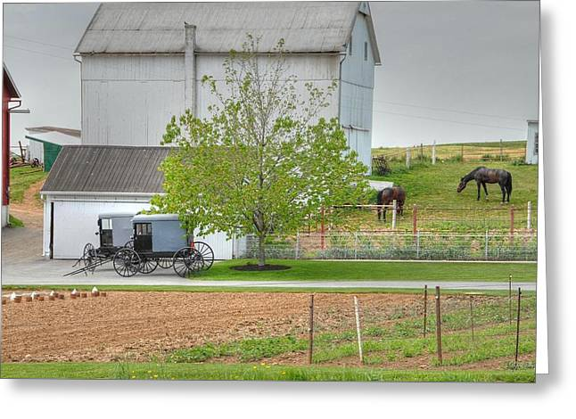 An Amish Farm Greeting Card by Dyle   Warren