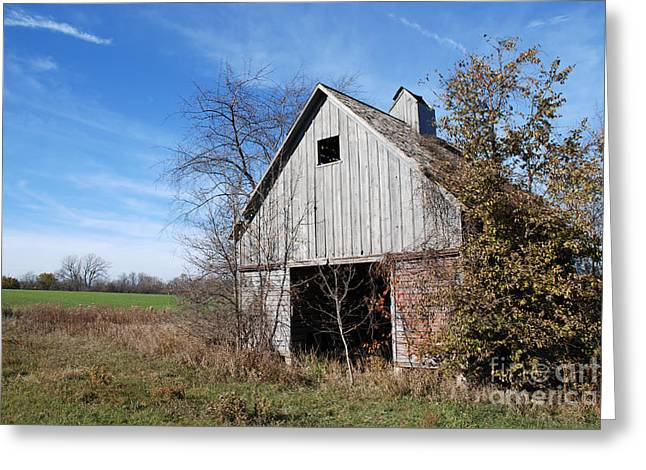 Barn Landscape Photographs Greeting Cards - An old rundown abandoned wooden barn under a blue sky in midwestern Illinois USA Greeting Card by Paul Velgos