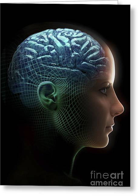 Artificial Life Greeting Cards - Android Brain Female Greeting Card by Science Picture Co