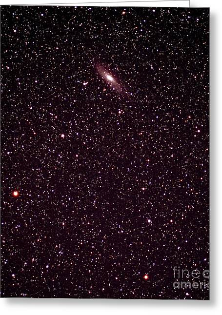 Andromeda Galaxy Greeting Cards - Andromeda Galaxy Greeting Card by John Sanford