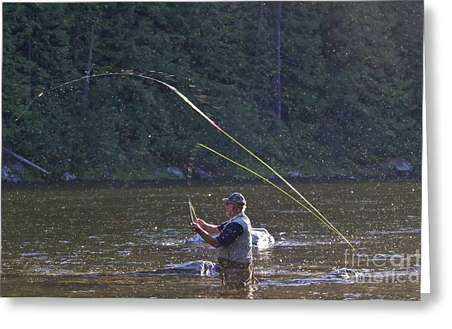 Fishing Creek Greeting Cards - Angler Fly Fishing, Kelly Creek Greeting Card by William H. Mullins