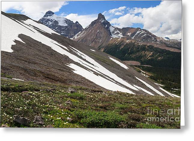 Mountain Road Greeting Cards - Angular Greeting Card by Charles Kozierok
