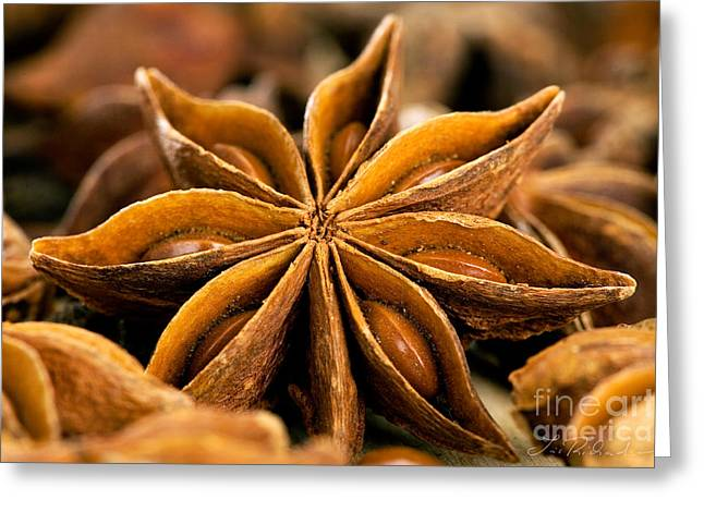 Aniseed Greeting Cards - Anise Star Greeting Card by Iris Richardson