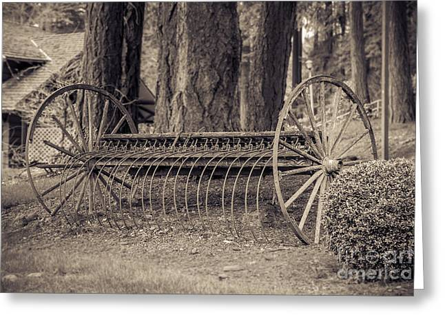 Antique Equipment Greeting Cards - Antique Hay Rake Greeting Card by Lucid Mood