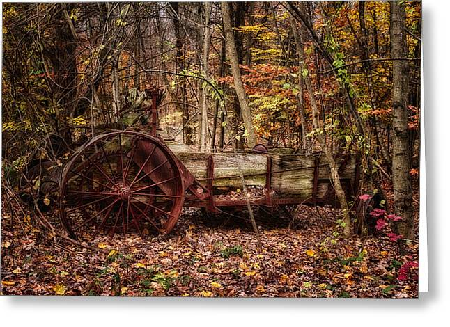 Lancelot Greeting Cards - Antique Manure Spreader In The Forest. Greeting Card by Jeff Sinon