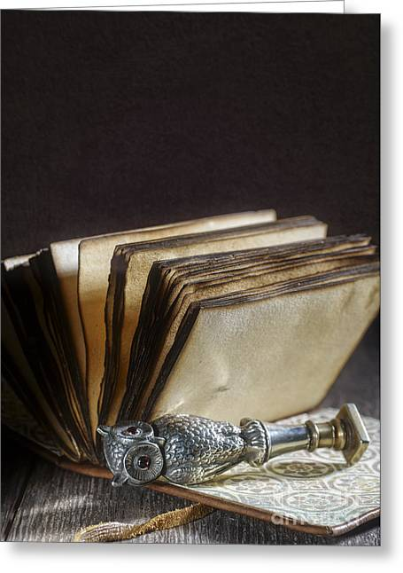 Notebook Greeting Cards - Antique Silver Owl Seal Greeting Card by Amanda And Christopher Elwell