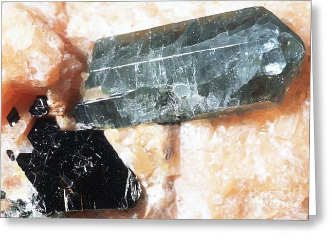 Calcium Phosphate Greeting Cards - Apatite Crystals Greeting Card by Dirk Wiersma