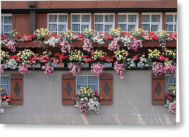 Wooden Shutter Greeting Cards - Appenzell Switzerland Greeting Card by Panoramic Images