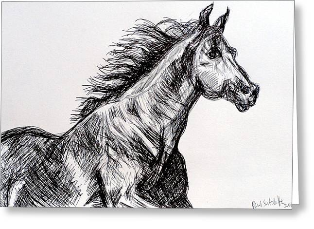Race Horse Greeting Cards - Arabian Horse Greeting Card by Paul Sutcliffe