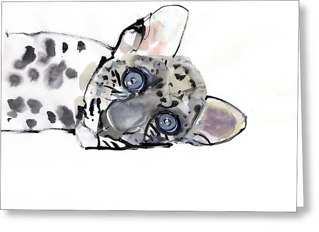 Hypnotic Greeting Cards - Arabian Leopard Greeting Card by Mark Adlington