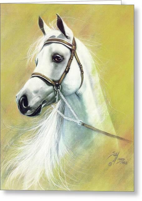 Watching Pastels Greeting Cards - Arabian Greeting Card by Sally  Evans