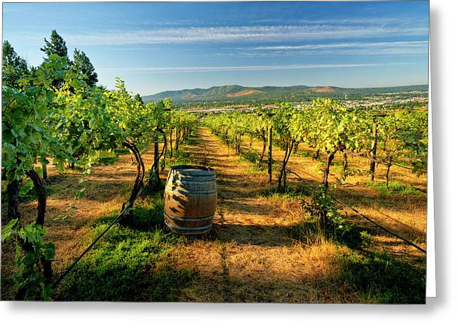 Arbor Crest Wine Cellars In Spokane Greeting Card by Richard Duval