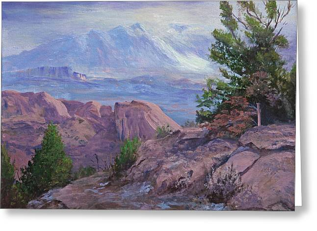 Arches National Park Pine Trees Greeting Cards - Arches View Point Greeting Card by Bev Finger
