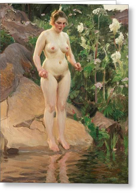 Frontal Nude Greeting Cards - Archipelago Flower Greeting Card by Anders Zorn