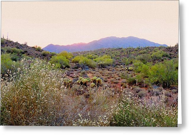 Cave Creek Cowboy Greeting Cards - Arizona Sunset Greeting Card by Gordon Beck