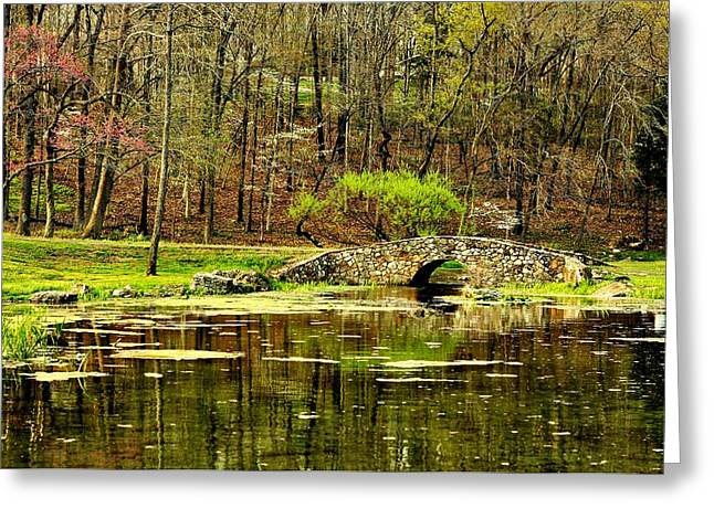 Dogwood Lake Greeting Cards - Arkansas Tranquility Greeting Card by Benjamin Yeager