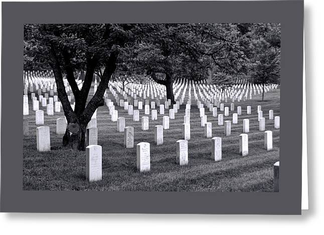 Civil War Site Greeting Cards - Arlington National Cemetery Greeting Card by Allen Beatty