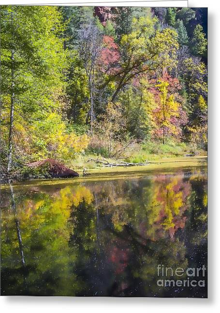 West Fork Greeting Cards - Artists Palette Greeting Card by Wayne  Johnson