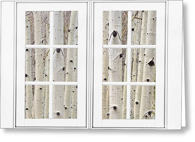 Wall Art Greeting Cards - Aspen Forest White Picture Window Frame View Greeting Card by James BO  Insogna