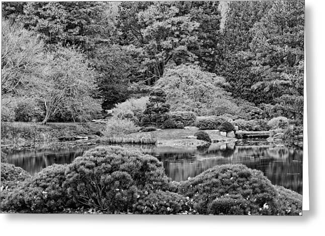 Public Garden Greeting Cards - Asticou Azelea Garden on Mount Desert Island Maine Greeting Card by Keith Webber Jr