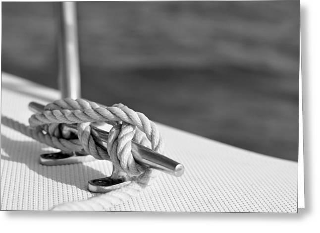 at sea Greeting Card by Laura  Fasulo