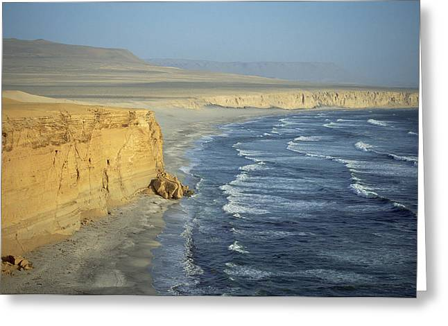 Ocean Shore Greeting Cards - Atacama Desert Cliffs And The Pacific Greeting Card by Tui De Roy