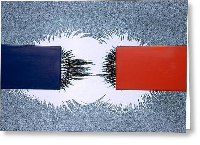 Magnetic Field Greeting Cards - Attraction between unlike magnetic poles Greeting Card by Science Photo Library