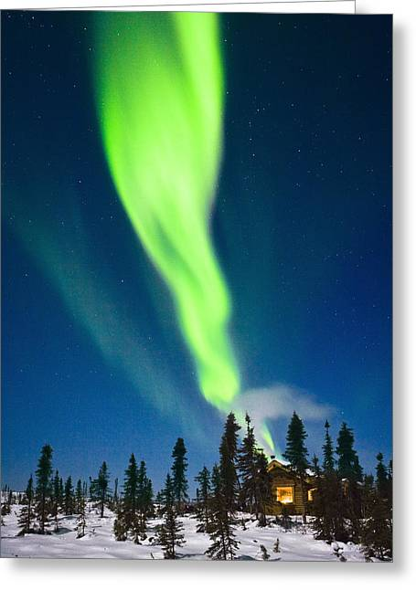 Log Cabin Interiors Greeting Cards - Aurora Over Cabin In The White Mountain Greeting Card by Kevin Smith