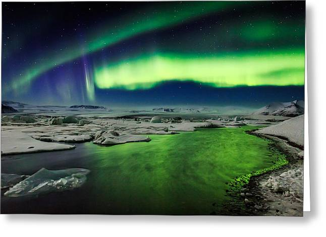 Color Green Greeting Cards - Auroras And Icebergs At The Glacial Greeting Card by Panoramic Images