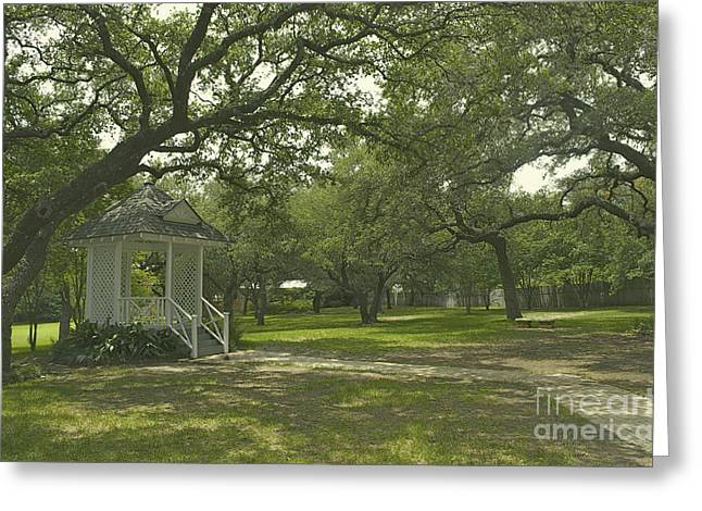 Sunday Stroll Greeting Cards - Austin Texas Southern Garden - Luther Fine Art Greeting Card by Luther Fine Art